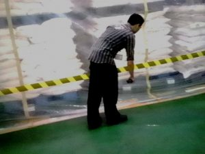 jasa fumigasi cempaka putih